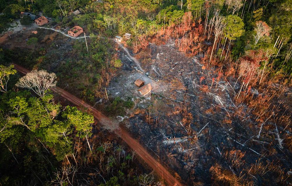 No Pará, a Terra Indígena Alto Rio Guamá sofreu com incêndios florestais e viu o desmatamento crescer em meio à pandemia