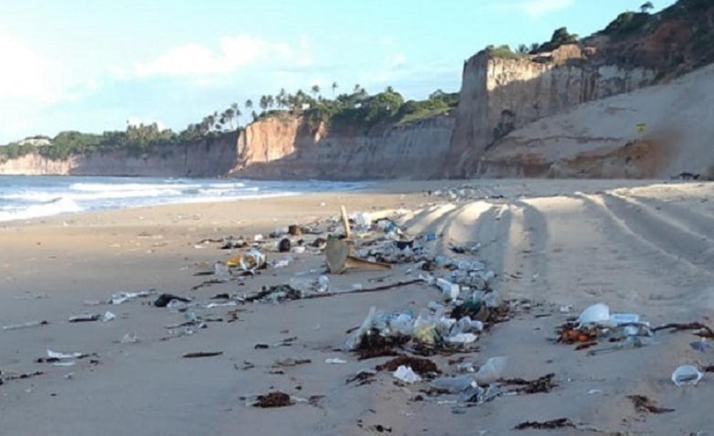 O Idema pede que a limpeza das praias seja feita 'o mais rápido possível, para que esse material não volte para o mar'