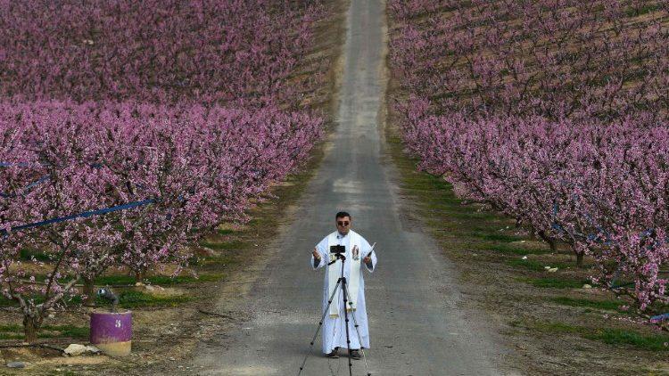 A pesquisa foi enviada aos 472 sacerdotes ordenados ou em preparação para a ordenação em 2021