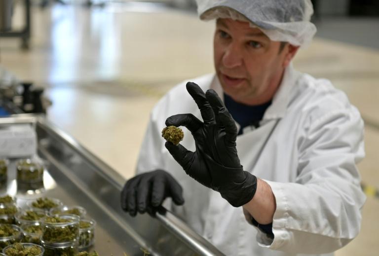 Jim Castetter, gerente comercial da Empire Standard, na linha de montagem da fábrica de produtos à base de CBD, em Binghamton (Nova York)