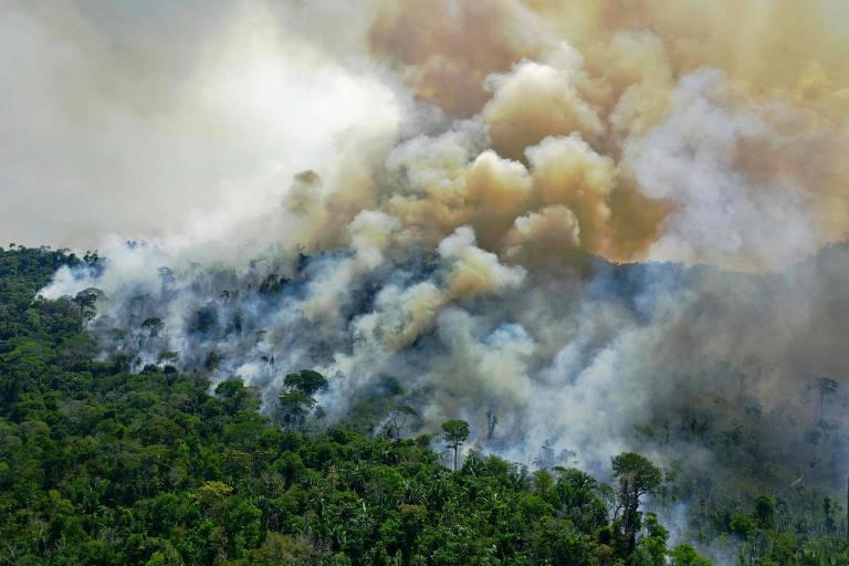 Queimadas na Amazônia: cúpula do clima viu novos promessas para redução das emissões de poluentes