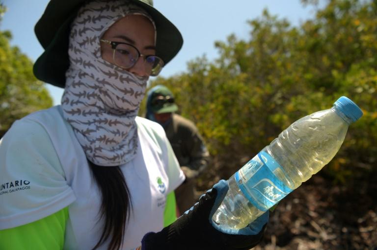 Voluntária segura garrafa plástica recolhida na Ilha Isabela, no arquipélago de Galápagos, no Oceano Pacífico, a 1000 km da costa do Equador, em 17 de fevereiro de 2019