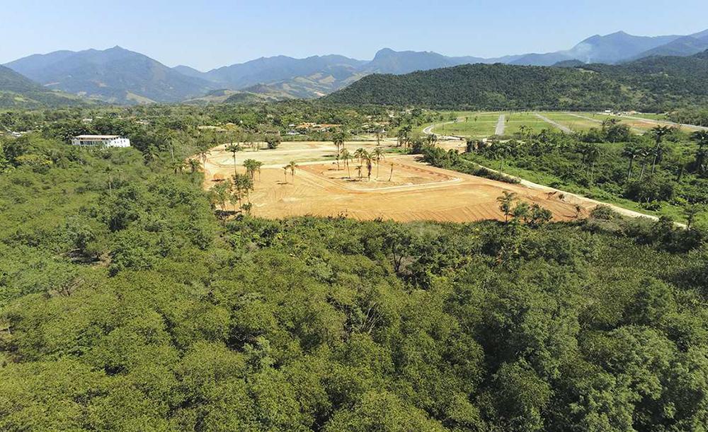 Vista do manguezal do Rio Jabaquara. As árvores em primeiro plano, na parte inferior da foto, já foram derrubadas
