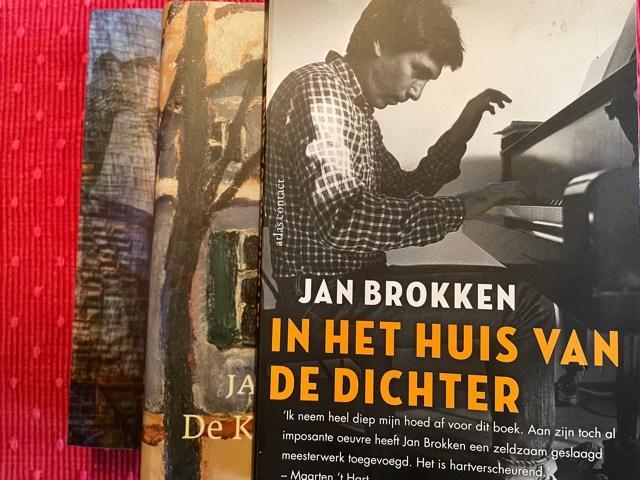 É um romance que presta um tributo profundo à amizade entre um mestre pianista russo-soviético e o grande escritor holandês, Jan Brokken