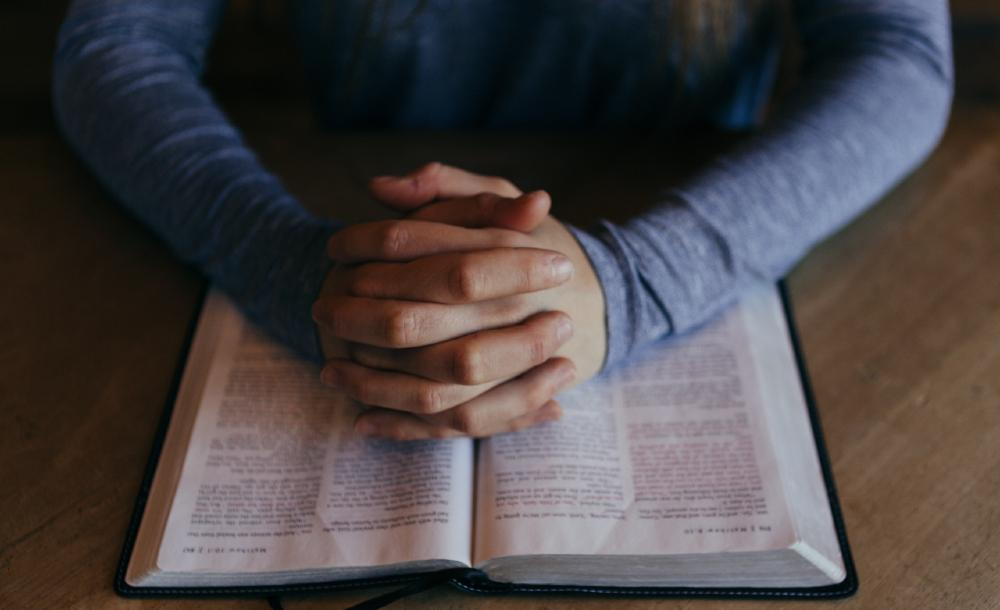 Voltar a Jesus é, pois, optar pela santidade do cotidiano que se manifesta em todo ato amoroso e que visa o bem do próximo e da natureza