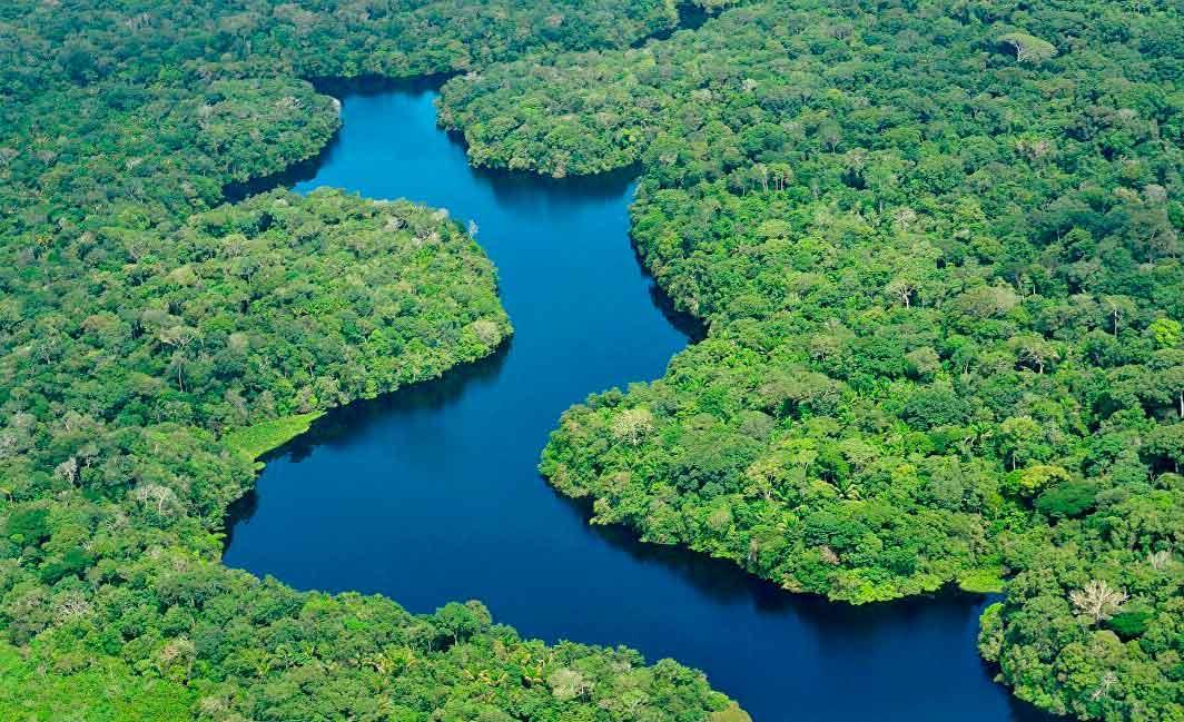 Área de Proteção no Baixo Rio Negro complementa a proteção de igarapés