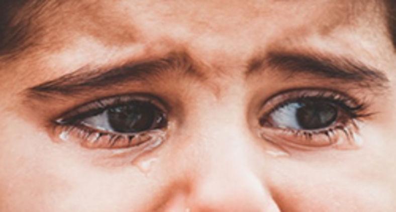 A criança e o adolescente devem ser tratados como seres humanos de capacidades, competências e criatividade (Zahra Amiri/Unsplash)