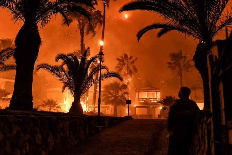 Homem observa incêndio florestal que atingiu Schinos (Grécia), a oeste de Atenas, em 19 de maio de 2021