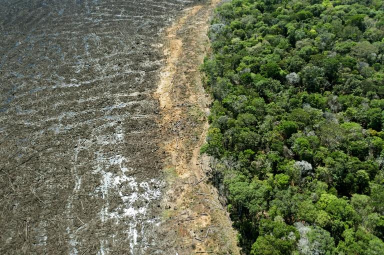 (ARQUIVO) Foto tirada em 07 de agosto de 2020 mostra uma área desmatada em Mato Grosso