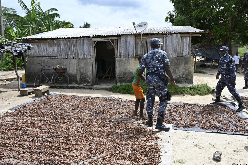 Operação de combate ao trabalho infantil em plantações de cacau na Costa do Marfim