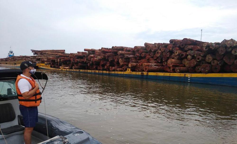 Operação das Forças Armadas apreende madeira ilegal no Pará