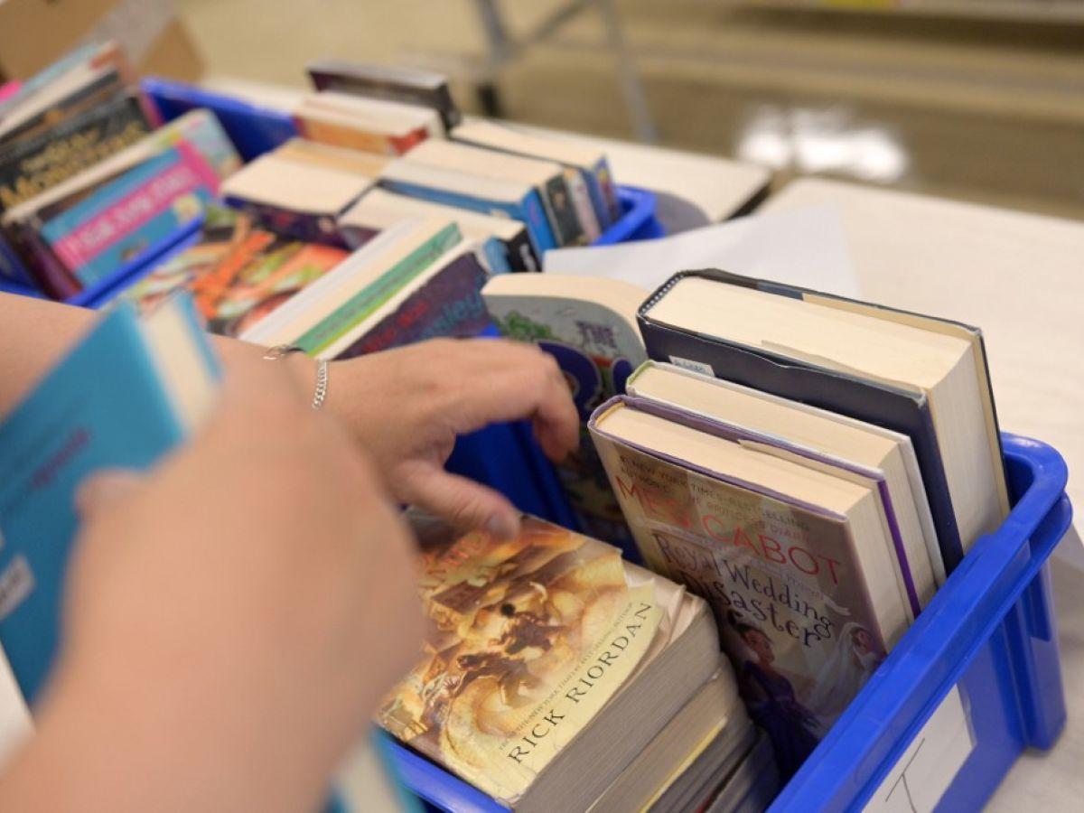 Algumas das dúvidas foram formato dos livros e o modo de inserir recursos audiovisuais nas obras