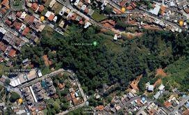 Moradores querem preservação da mata (Google Maps)