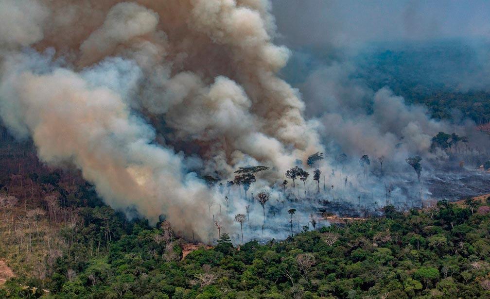 partículas que pairam no ar vindas de queimadas são responsáveis por várias doenças pulmonares