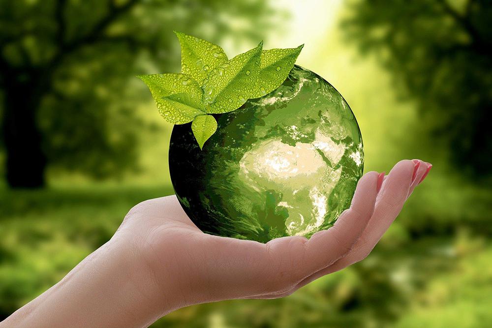A consciência ecológica diz respeito não somente a deter a destruição dos ecossistemas, mas também a criar relações de cooperação e reciprocidade.