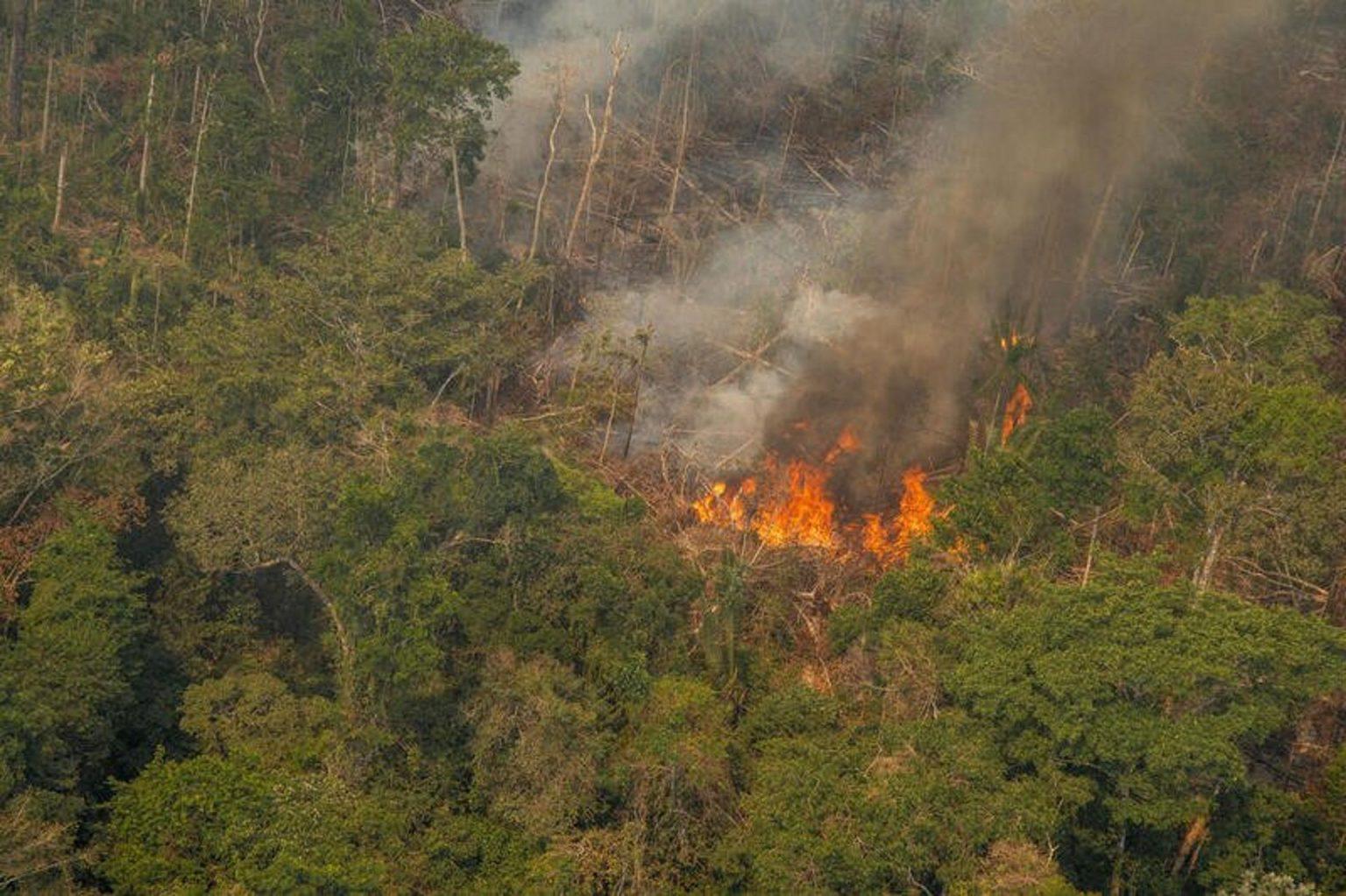 Queimada na Reserva Extrativista Jaci-Paraná- em Porto Velho (RO) registrada em agosto de 2020