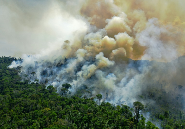 Esta foto de 16 de agosto de 2020 mostra vista aérea de uma área incendiada na floresta amazônica, ao sul de Novo Progresso, no Pará