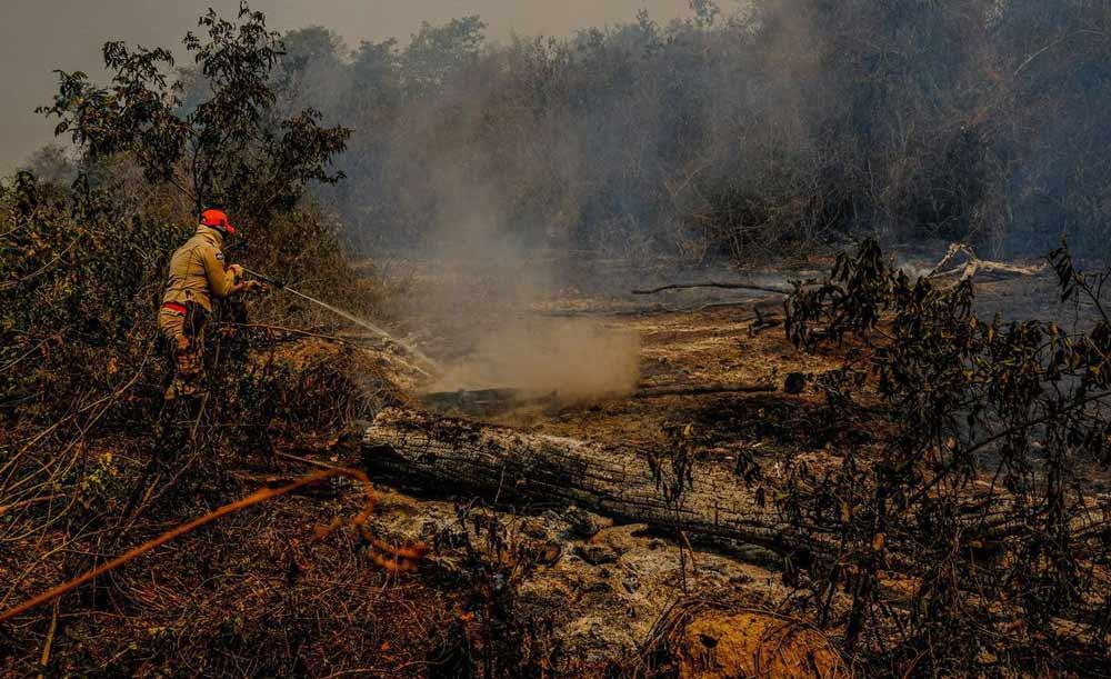 Bombeiro combate o fogo no Pantanal, área muito afetada pela escassez de chuvas