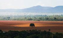 Apesar de os olhares se voltarem para a Amazônia, o Cerrado é fundamental para a rede hídrica do país (Marcelo Camargo/ABr)