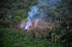 """""""Sinais vitais"""" da Terra estão enfraquecendo, apontam cientistas (Raul ARBOLEDA/afp)"""