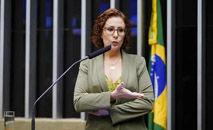 Canção 'Xiquexique' foi usada sem autorização em vídeo de propaganda sobre o presidente Bolsonaro (Pedro Valadares/Agência Câmara)