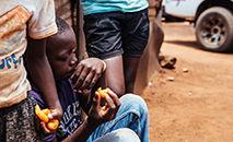 """O Vaticano destaca a ideia de que a fome no mundo é um problema de todos, pelo que a sua superação é """"um imperativo moral global"""" (Unsplash/Timothy Barlin)"""