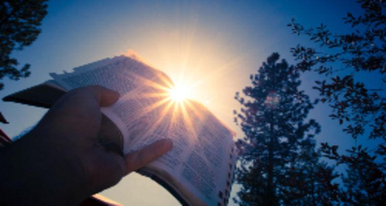Ao se escolher, com base em preconceitos arraigados, o que é ou não válido no texto bíblico, haverá consequências dolorosas (Timothy Eberly / Unsplash)