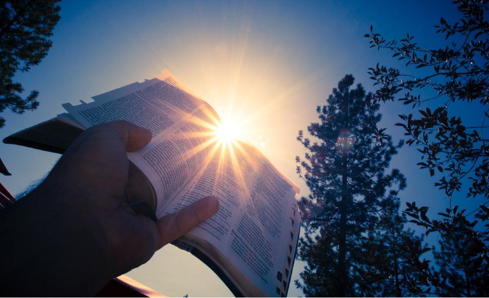 Ao se escolher, com base em preconceitos arraigados, o que é ou não válido no texto bíblico, haverá consequências dolorosas