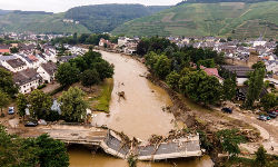 Lama invadiu casas e levou o que estava pelo caminho no Noroeste da Alemanha (Handout / Bezirksregierung Köln / AFP)