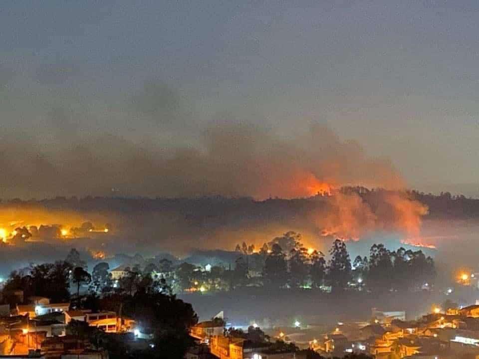 Parque Estadual do Juquery, em Franco da Rocha São Paulo, teve destruição de 70 % depois de incêndio provocado por balão