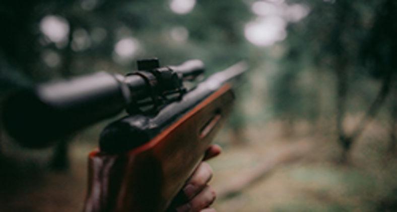 Que fazer com o fuzil? (Unsplash/Sebastian Pociecha)