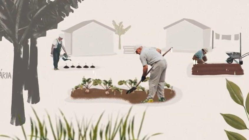A série com 7 episódios exibe vídeos com a participação de lideranças locais e apresentam iniciativas de agroecologia, economia solidária e consumo consciente que são apoiadas e acompanhadas pela Repam-Brasil