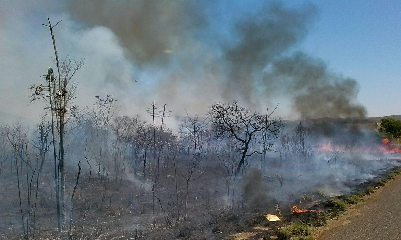 Número de queimadas em SP, este ano, já é o maior em dez anos