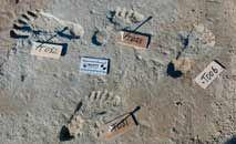 Descoberta das pegadas comprovam ocupação humana nas Américas 7 mil anos antes do que se pensava (Science/Reprodução)