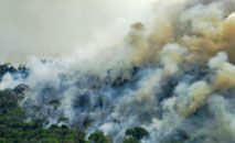 O descolamento entre o discurso e a prática dos congressistas brasileiros sobre a agenda ambiental foi medido por estudo (Victor Moriyama / AFP Getty Images)