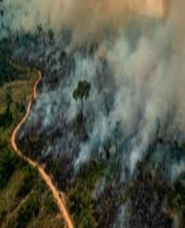 Queimadas na Amazônia são um dos grandes obstáculos para neutralizar as emissões no país (Victor Moriyama/Greenpeace)