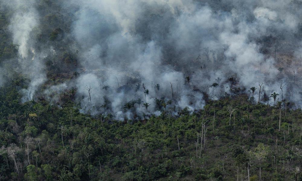 Vista aérea de um desmatamento na Amazônia para expansão pecuária, em Porto Velho, Rondônia
