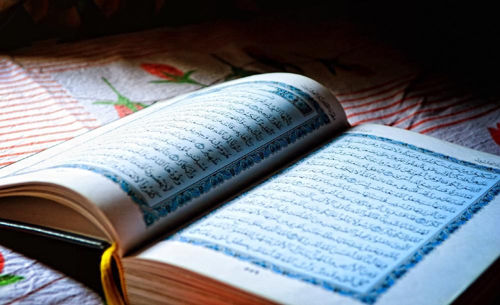 Dependendo do ponto de partida de quem a interpreta, a sharia pode ser uma diretriz religioso-ética e um sistema de normas, em conformidade com as concepções de direitos humanos contemporâneas - ou ser o exato oposto