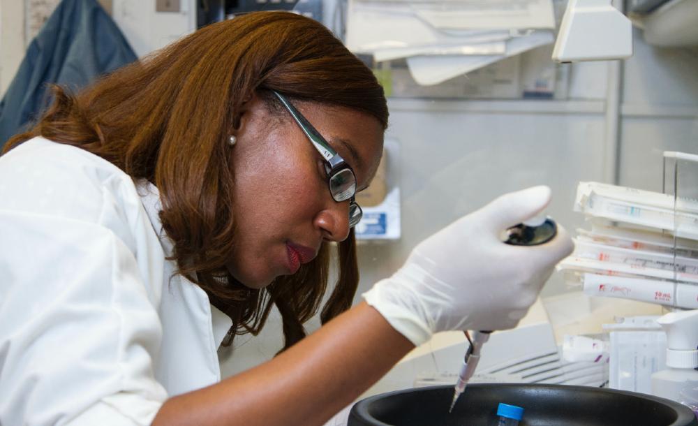 Sem ciência, o país está fadado ao atraso, considera Janine Ribeiro