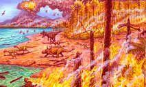 Incêndios espontâneos tiveram impacto significativo na biota do continente (Polar Research/Reprodução)
