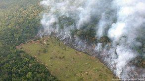 Brasil é de longe o país que abriga a maior parte da Floresta Amazônica (DW)