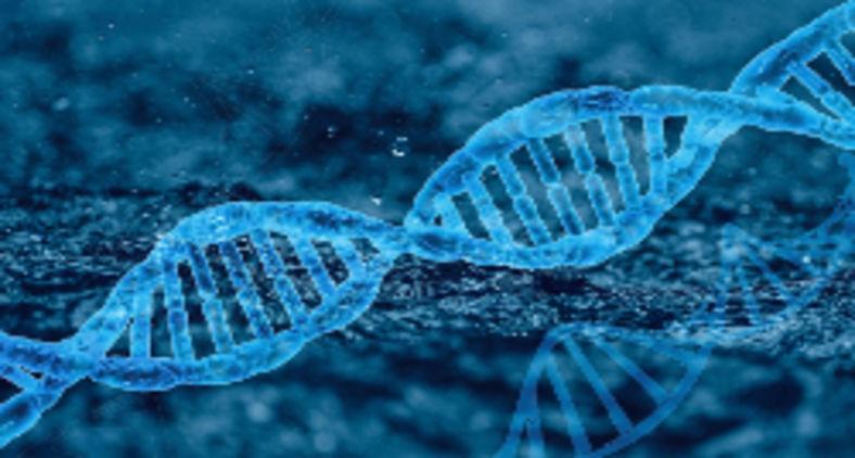 As combinações do DNA, se transferidas para o armazenamento de dados, são uma promissora tecnologia (Furiosa-L / Pixabay)