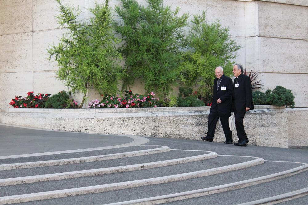 'O sínodo girou em torno de três palavras-chaves: natureza, ser humano e o papel da Igreja'
