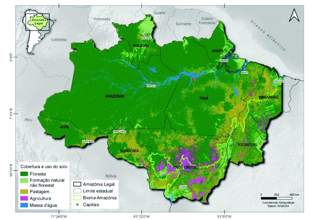 Pastos cobriam cerca de 90% da área desmatada na Amazônia em 2019. Fonte:Rodney Salomão/Mapbiomas