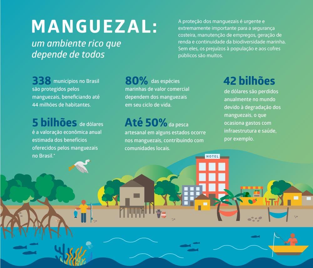 Fonte: Oceano sem mistérios – Desvendando os Manguezais, Fundação Grupo Boticário