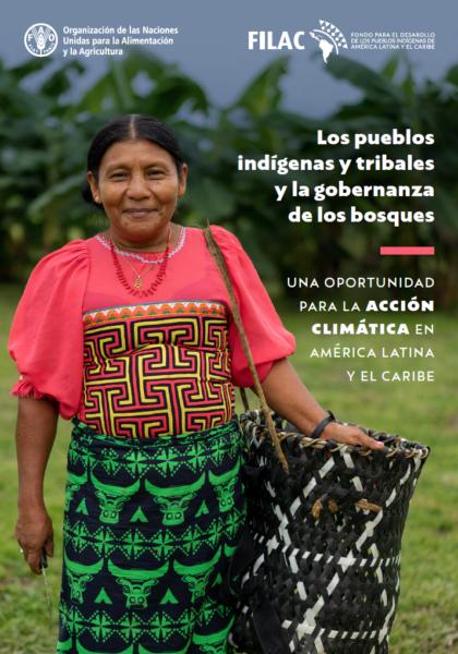 """O relatório """"Povos indígenas e comunidades tradicionais e a governança florestal"""" foi produzido pela ONU (Reprodução)"""