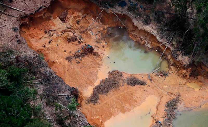 Uso de mercúrio polui rios e peixes, que contaminam a população indígena (Chico Batata/Greenpeace)
