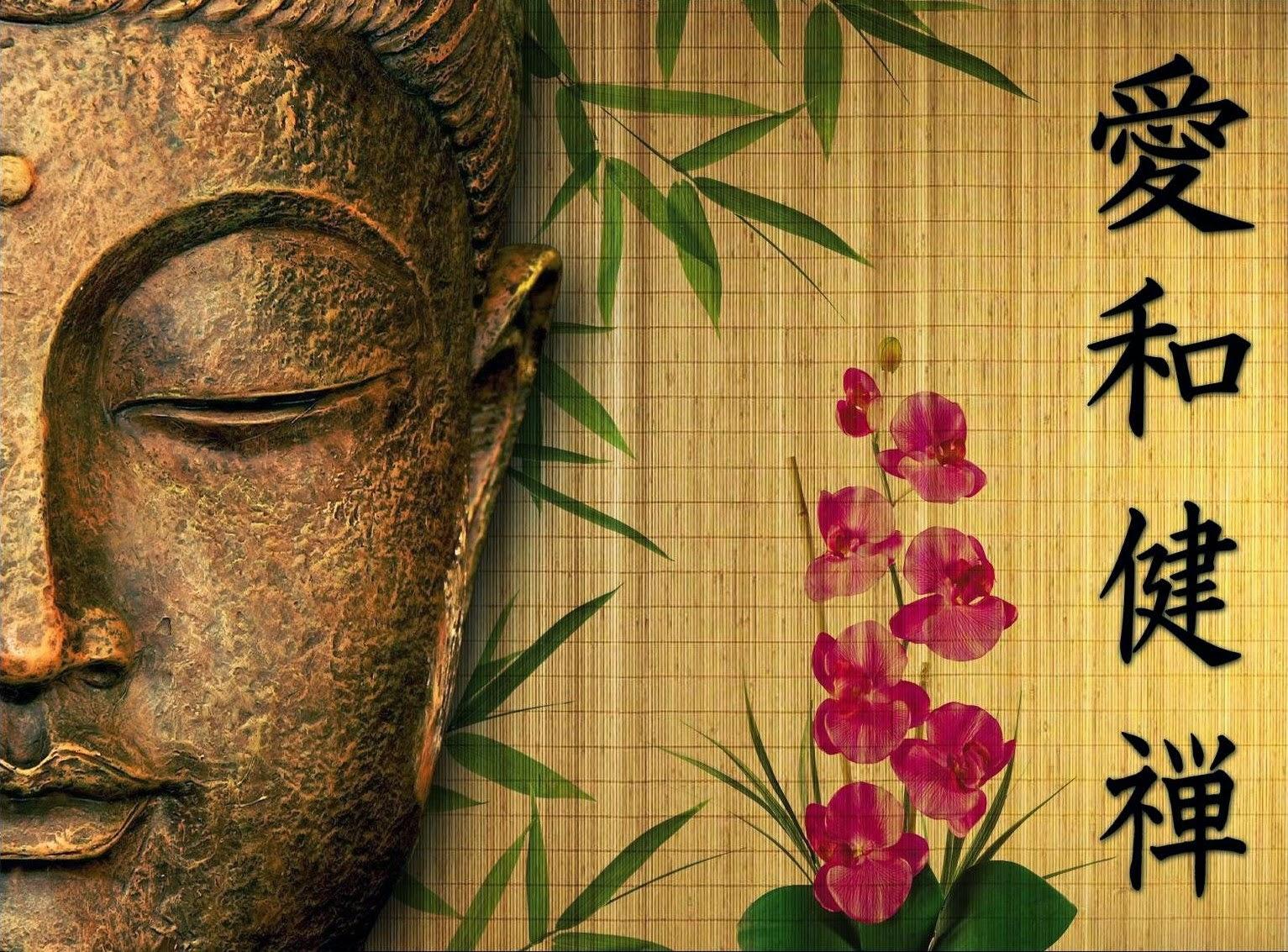 'A paz está dentro de você, não a procure à sua volta'