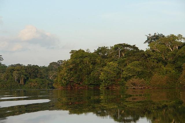 Rio Xingu ano de 2013 (Foto cedida por Verena Glass/Xingu Vivo)
