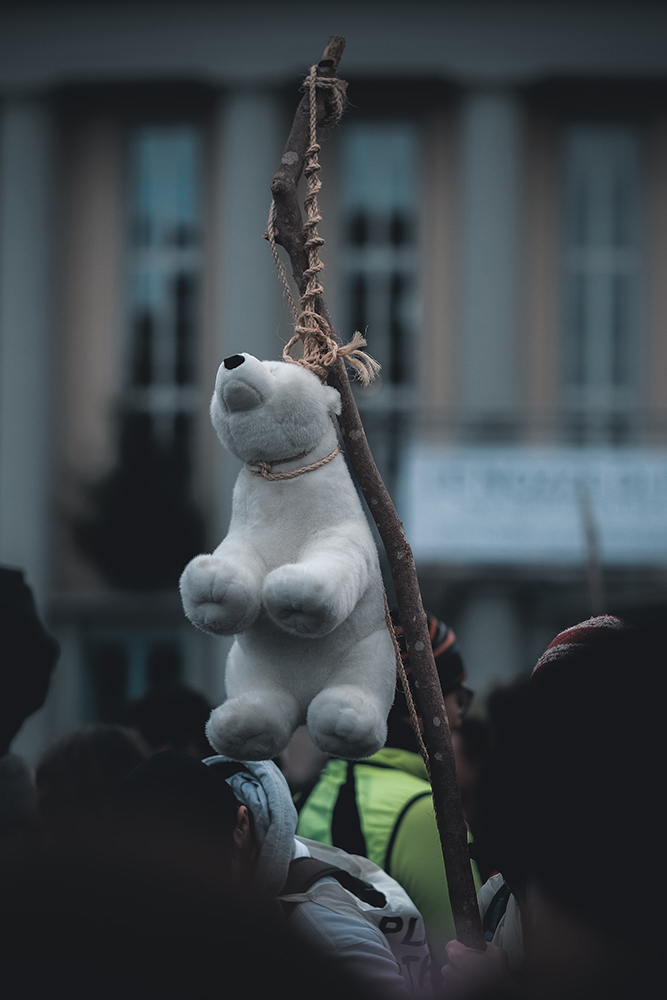 Greve das escolas pelo clima,iniciativa estudantil contra o aquecimento global (Kevin Mueller/ Unsplash)